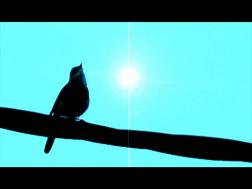 vlcsnap-2014-05-01-15h58m33s19